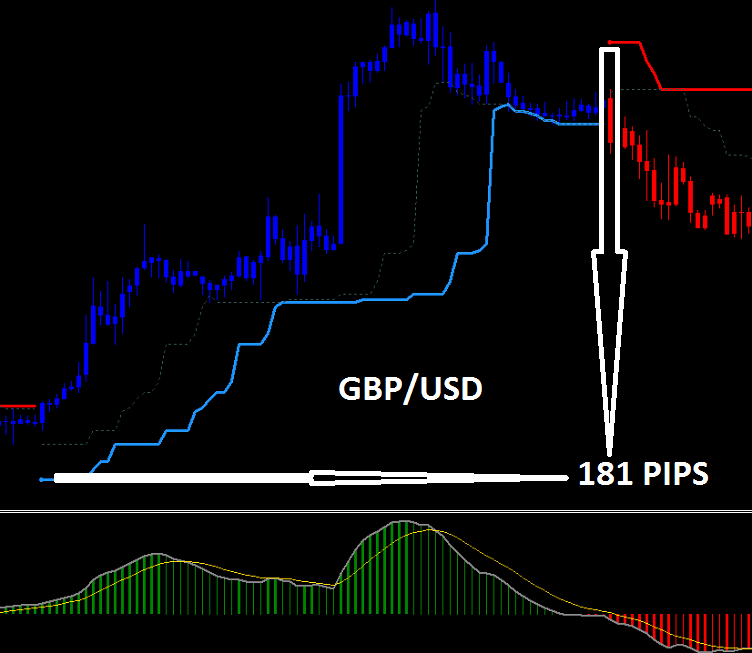 Pips meaning in forex
